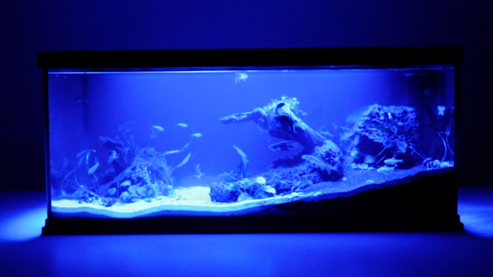 Aqua Effects - Blue