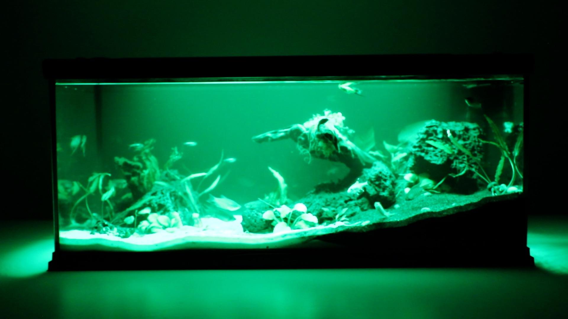 Aqua Effects - Green