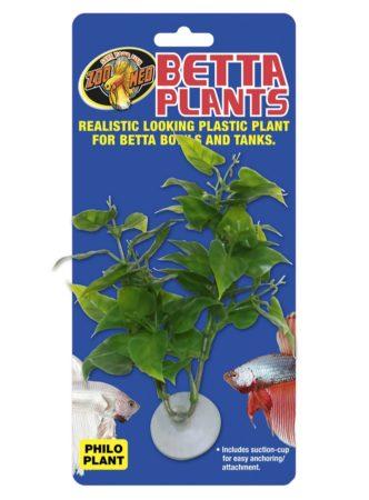 Betta Plants™ - Philo Plant