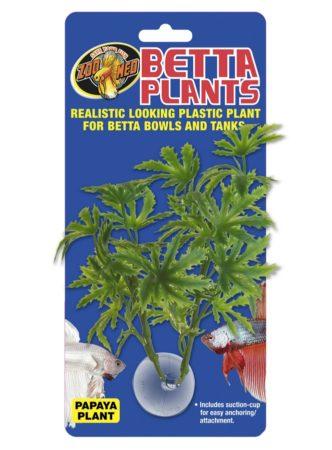 Betta Plants™ - Papaya