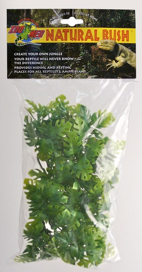 Natural Bush Plants Amazonian Phyllo Zoo Med