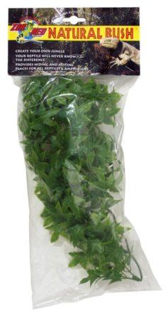 Natural Bush™ Plants - Congo Ivy