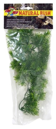 Natural Bush™ Plants - Borneo Star