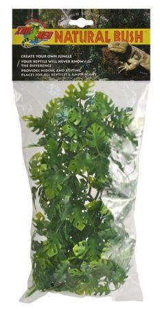 Natural Bush™ Plants - Amazonian Phyllo