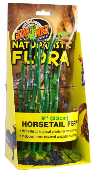 Naturalistic Flora Horsetail Fern Zoo Med Laboratories Inc