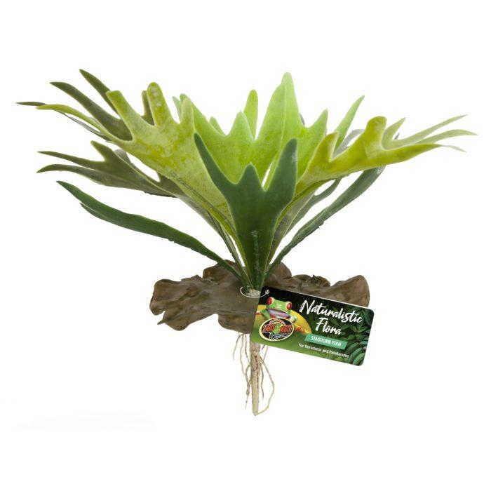 Naturalistic Flora Saghorn Fern