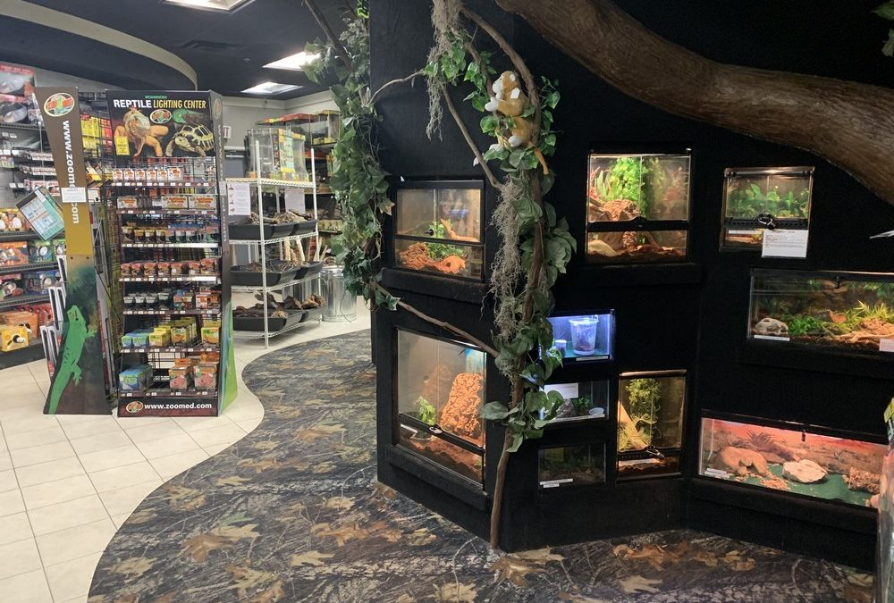 Store of the Month – May 2019
