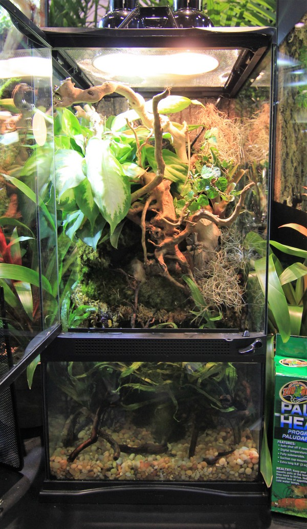 Paludarium Zoo Med Laboratories Inc