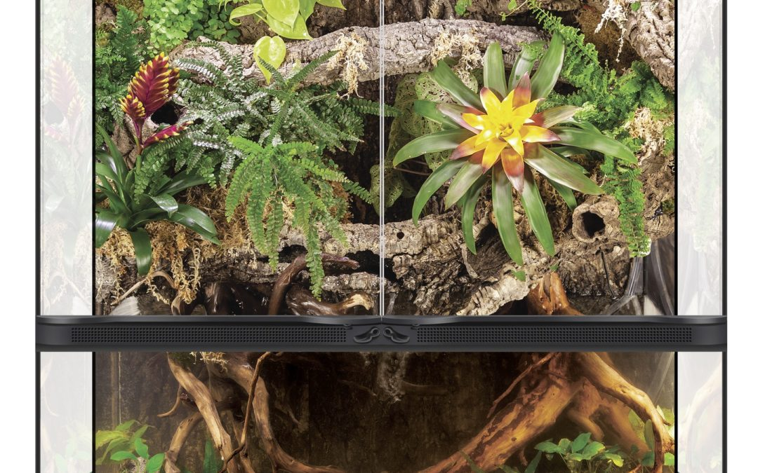 Paludarium Double Door